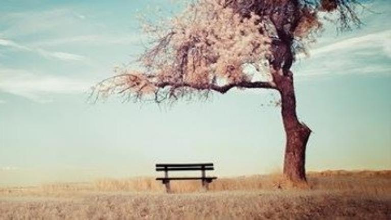 Bạn biết được bao nhiêu câu nói trong tiểu thuyết ngôn tình ?