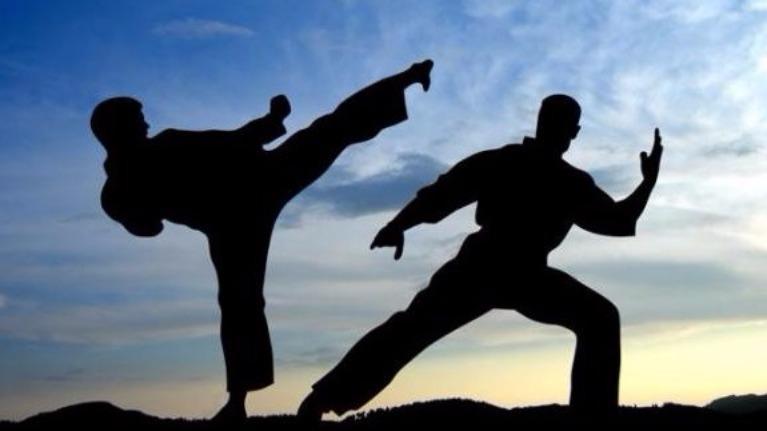 bạn có am hiểu về võ thuật Việt Nam?