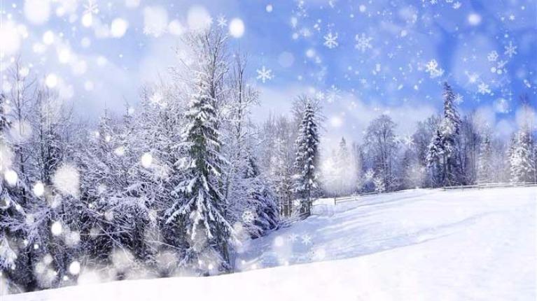 Mùa bạn thích trong năm sẽ tiết lộ tính cách về bạn.
