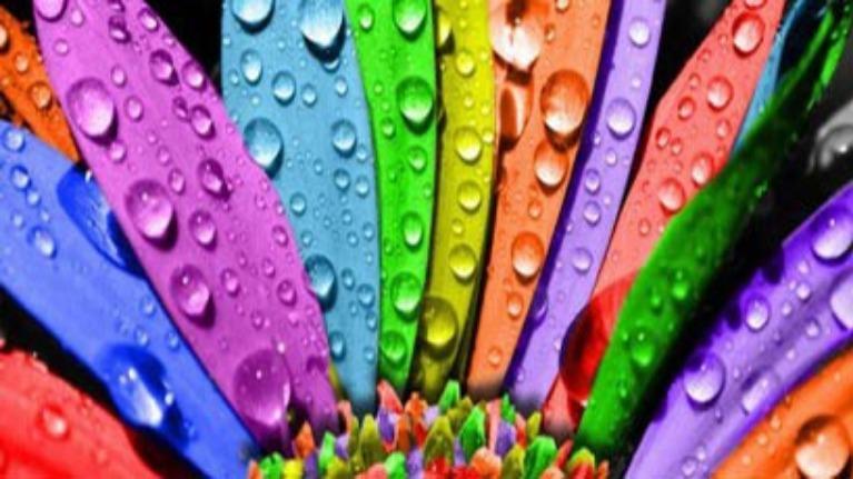 Màu sắc cuộc sống của bạn là gì?