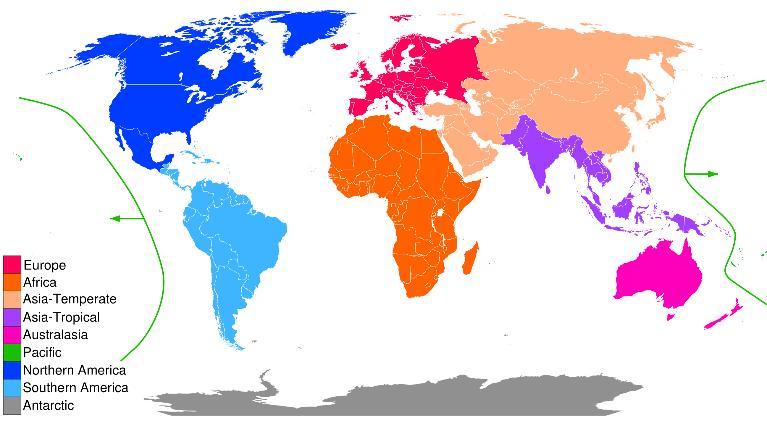 Khám phá bản đồ châu lục và hình dáng các nước, bạn thấy gì?