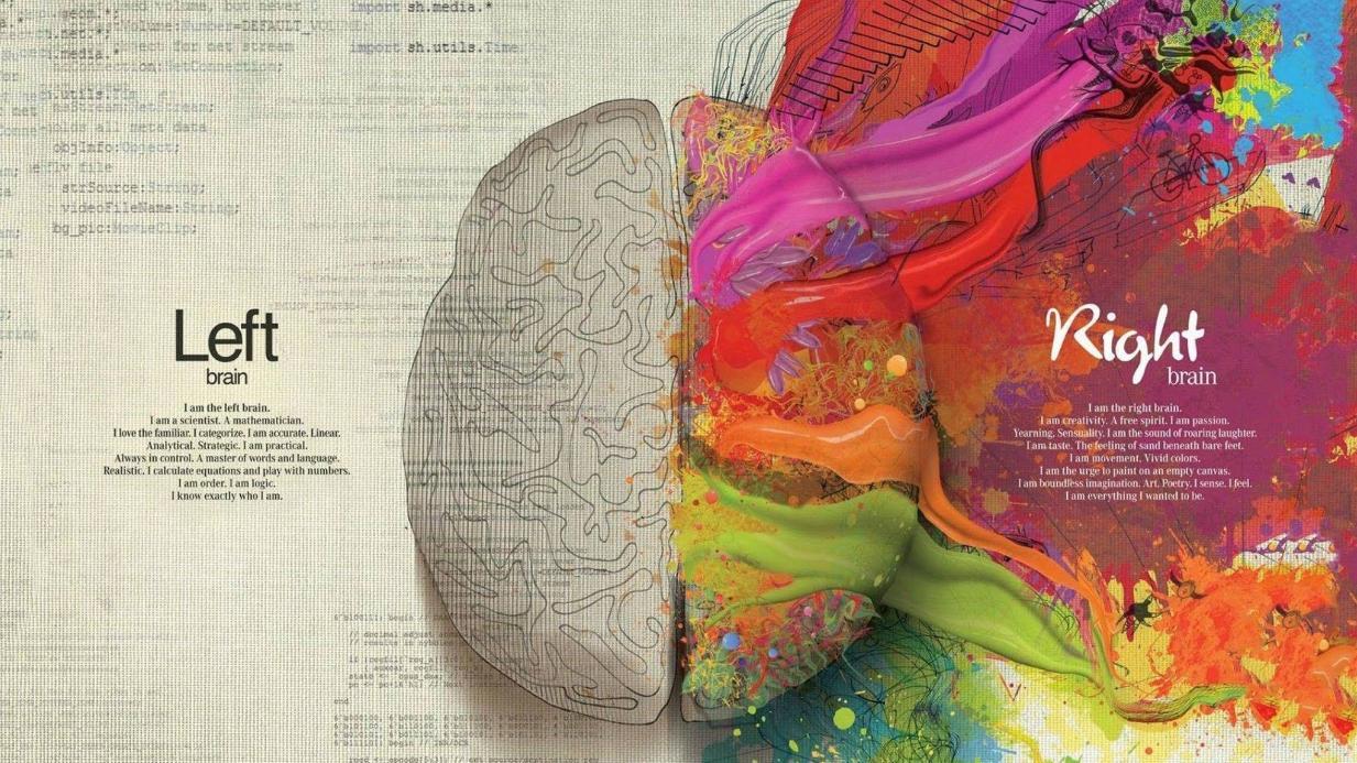 Trong bốn loại hình cơ bản của trí não, bạn là...?
