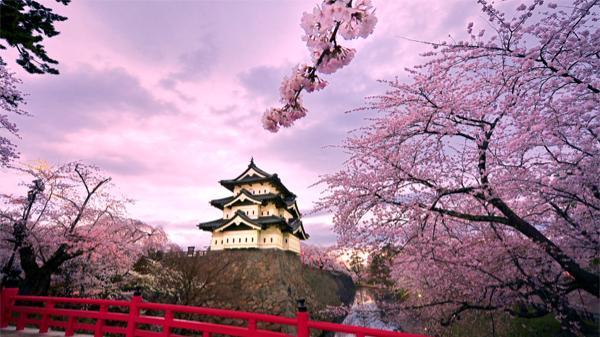 Những điều thú vị về Nhật Bản.