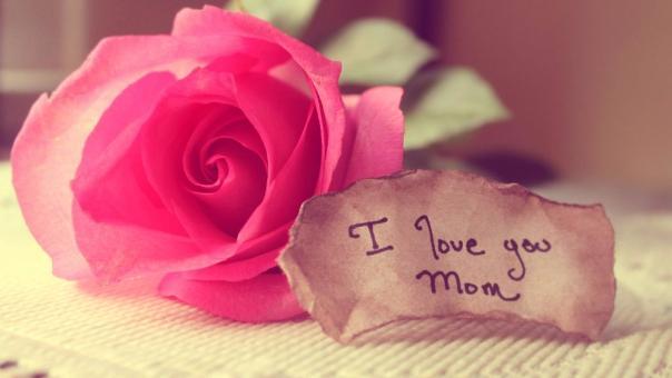 Mức độ yêu mẹ của bạn là bao nhiêu?