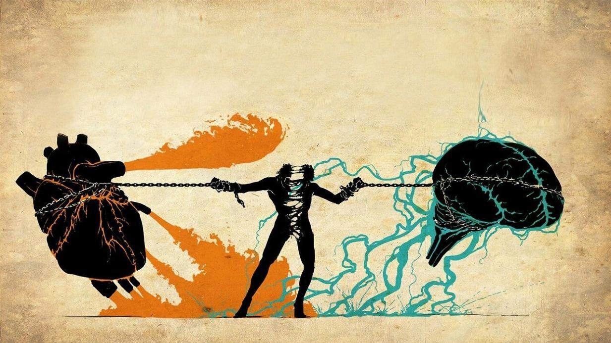 Bạn là người sống tình cảm hay lý trí?