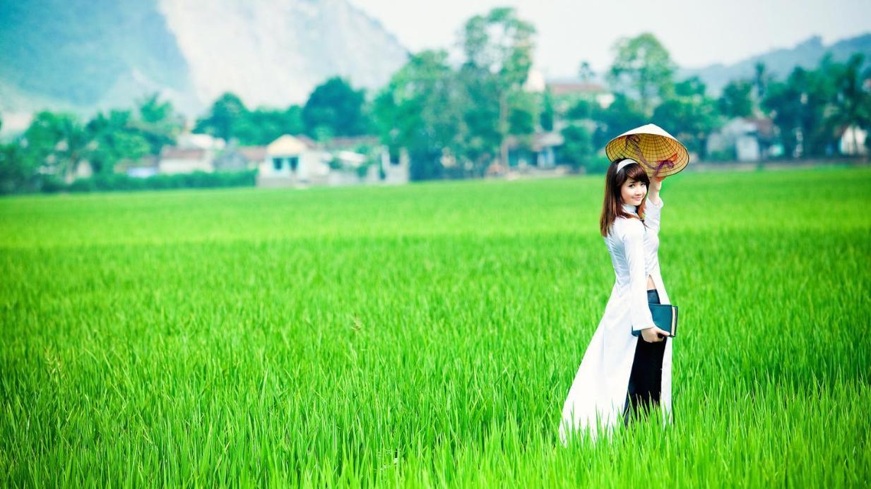 Một nửa của bạn sẽ đến từ vùng nào của Việt Nam?