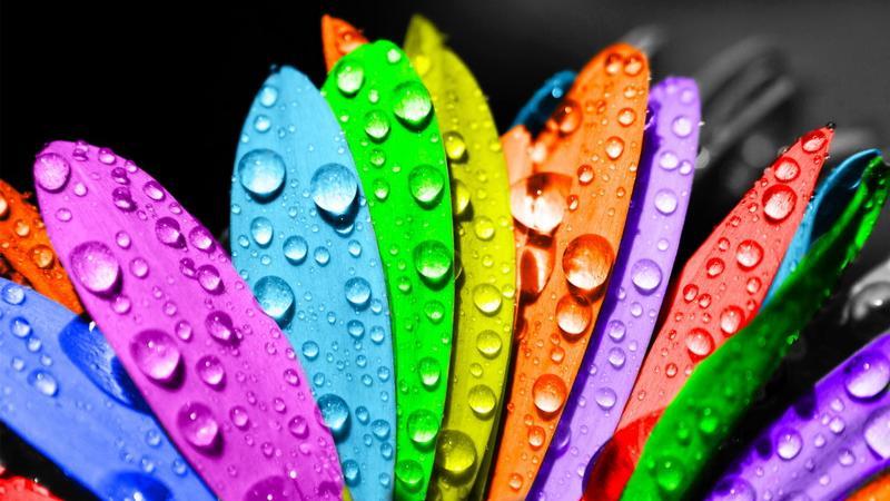 Trắc nghiệm màu sắc!