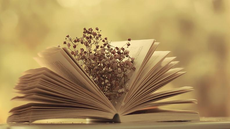 Văn học hé lộ gì về xu hướng thể hiện cảm xúc của bạn?